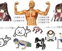 胸筋の鍛え方(画像)