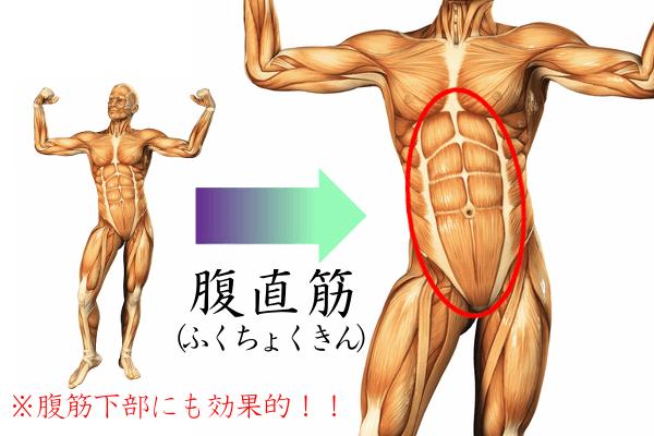 Vシット(V字腹筋)