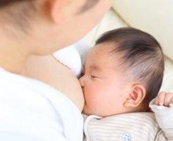 母乳 授乳