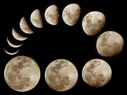 満月 新月