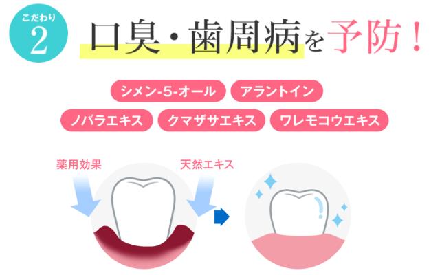 口臭・歯周病を予防