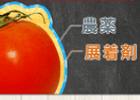 ベジシャワー 口コミ・評判