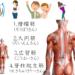 背筋の鍛え方は意外と少ない?自宅でも実践できる背筋の筋トレメニュー8選