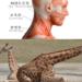 首の筋肉を鍛える筋トレ方法と7つのメリット~首を鍛えてモテ期到来?